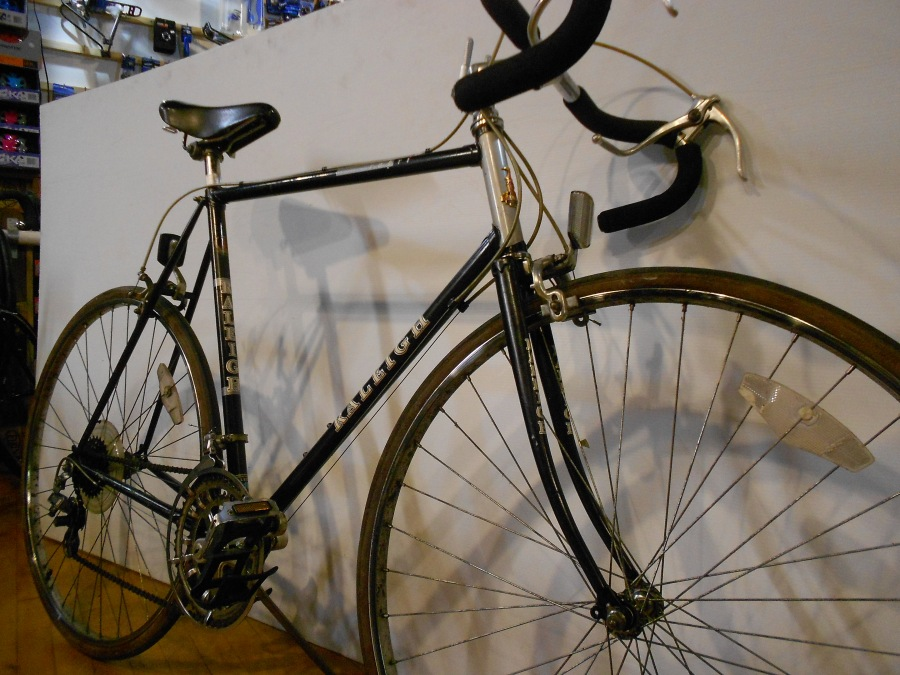 Raleigh Capri 10 Speed